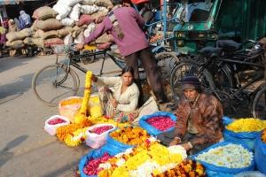 India 039